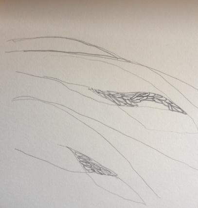 welsh hill sketch